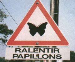 panneau signalisation ralentir papillons