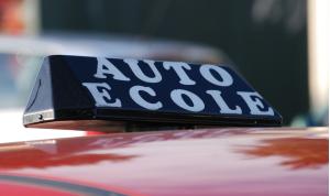auto école permis de conduire réforme 2014